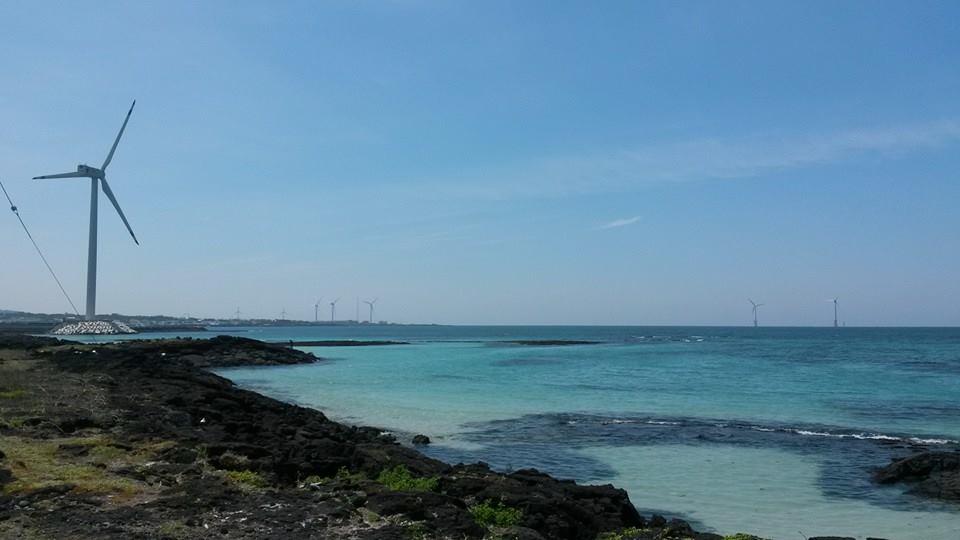 Wind turbines along the coast