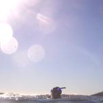 Surfacing at Laguna Beach